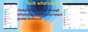 bulk whatsapp