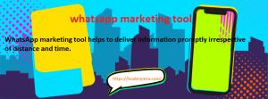 whatsapp marketing tool